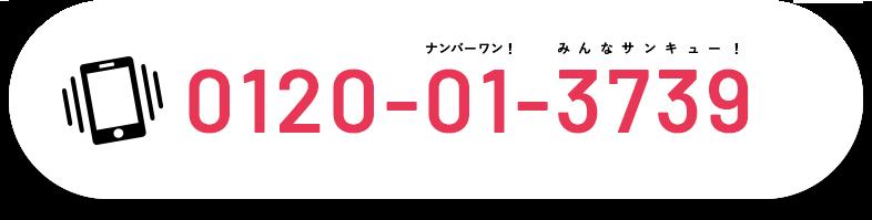 0120-01-3739