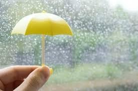 雨ばっかり(~_~;)